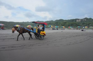 The Andong